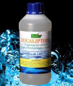 SPA EUKALYPTUS 1000 ml (koncentrát)